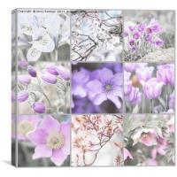 Spring Bloom Collage. Shabby Chic Collection, Canvas Print