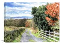 A country lane in autumn, Canvas Print