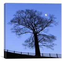 Lunar tree at dusk, Canvas Print