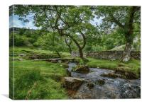 Malham Cove brook, Canvas Print