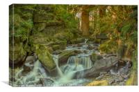 Fairies Table, Healey Dell Nature reserve, Canvas Print
