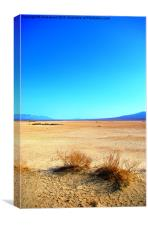 Life in Death (valley), Canvas Print