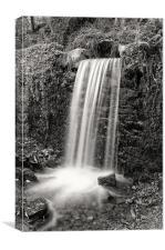 Woodland waterfall B&W, Canvas Print
