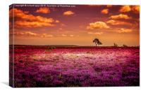 Purple Paradise, Canvas Print
