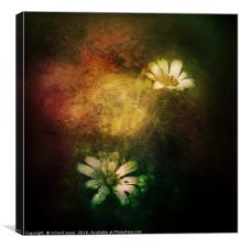 Floral Grace, Canvas Print
