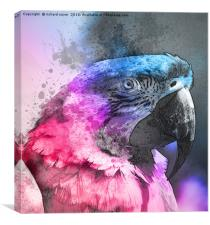 Pretty Polly, Canvas Print