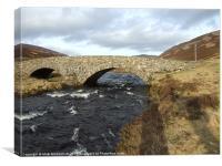Rural Bridge in Scotland, Canvas Print