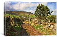 Country View Of Pendle Hill, Canvas Print