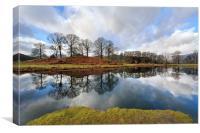 River Brathay Tree Reflections, Canvas Print