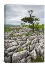 Yorkshire Limestone Pavement, Canvas Print
