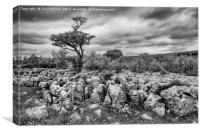 Moody Skies Over the Limestone Pavement, Canvas Print