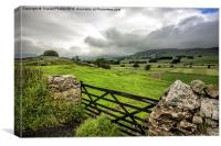 view across the dales, Canvas Print