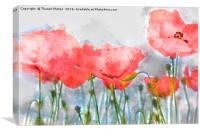 Poppy's in water colour, Canvas Print