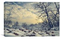 Winter Landscape, Canvas Print