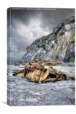 Saltwick Bay Shipwreck, Canvas Print