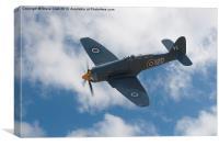 Hawker Sea Fury, Canvas Print