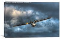 Catalina Flying Boat, Canvas Print