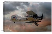 Stringbag Salute - (Swordfish Torpedo Bomber), Canvas Print
