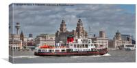 Royal Iris of the Mersey, Canvas Print