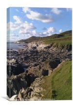 North devon coastal view, Canvas Print