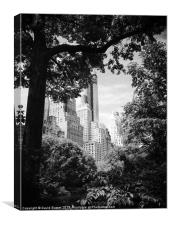 New york view central park, Canvas Print