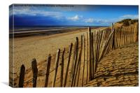 Fenced in at the beach, Canvas Print
