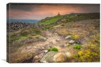 Rylestone Cross on Barden Moor, Canvas Print