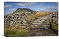 Pen-Y-Ghent from near Helwith Bridge, Canvas Print