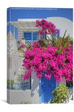 House of Bougainvillea, Canvas Print