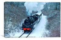 73129 In Snow, Canvas Print