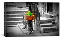 Old Bicycle and Basket, Durham, Canvas Print
