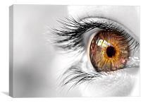 Golden Eye, Canvas Print