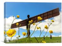 Angel of the North Buttercups, Canvas Print