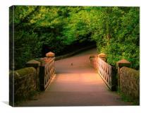 Saltwell Park Sunny Bridge, Canvas Print