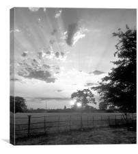Vintage farmland sunset
