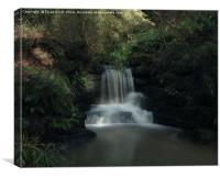 Pittencreiff Park Waterfall, Canvas Print