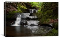 Fintry Waterfalls, Canvas Print