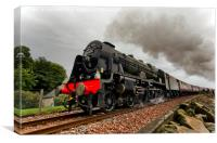 Royal Scot, Canvas Print