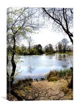 Lake, Canvas Print