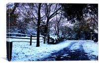 Snow, Canvas Print