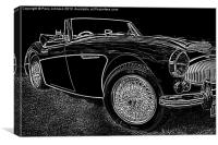 Black & White Healey, Canvas Print