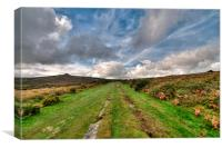 Granite Tramway Haytor on Dartmoor, Canvas Print