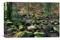 The River Dart near Dartmeet, Canvas Print