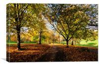 Autumn at Cockington Country Park Torquay, Canvas Print