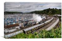 The Steam train at Kingswear, Canvas Print