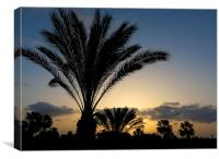 Palm Tree Sunrise at Fuerteventura Canary Islands, Canvas Print
