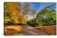 Autumn at Cockington Country Park, Canvas Print