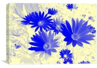 Blue daisies on a cream background, Canvas Print