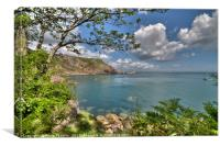 Ansteys Cove and Long Quarry Point Torquay, Canvas Print