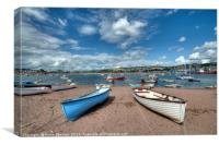 Teignmouth Back Beach on The River Teign , Canvas Print